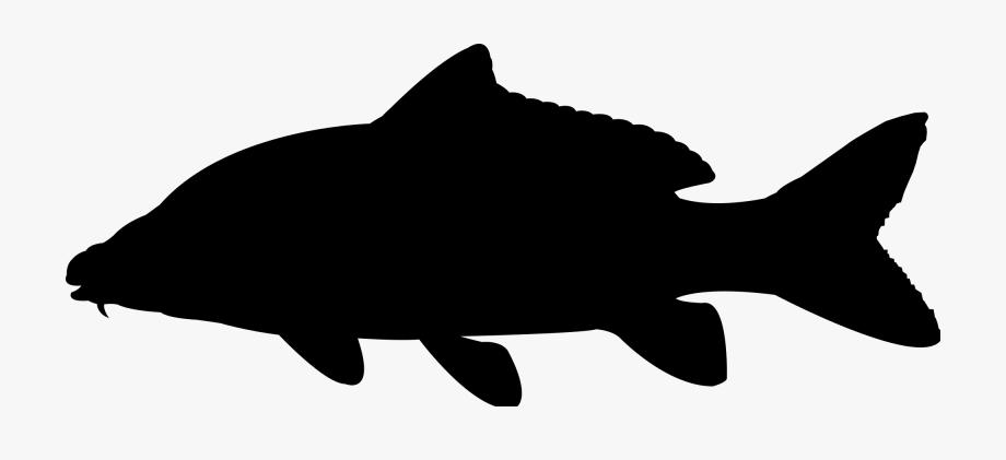 Salmon clipart pile. Fish silhouette buy clip