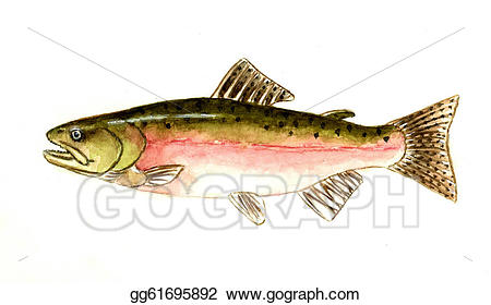 Stock illustrations gg . Salmon clipart pink salmon