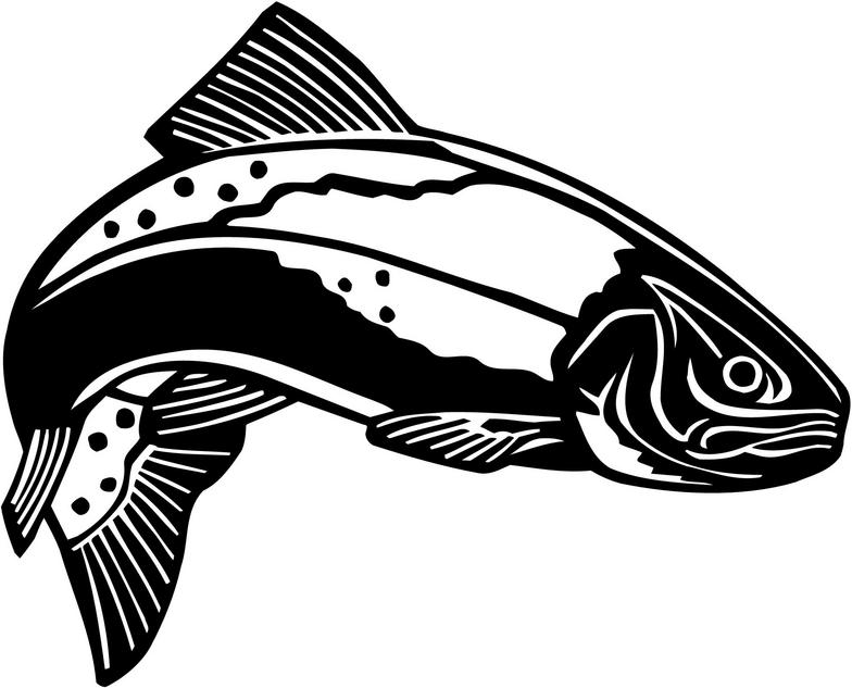 Trout clipart speckled trout. Free steelhead cliparts download