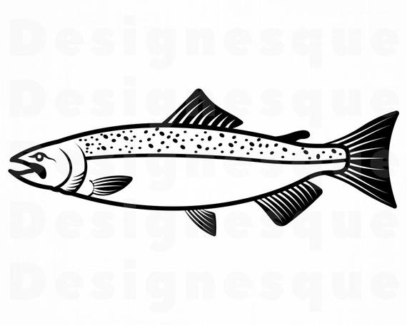 Chinook fishing fish files. Salmon clipart svg