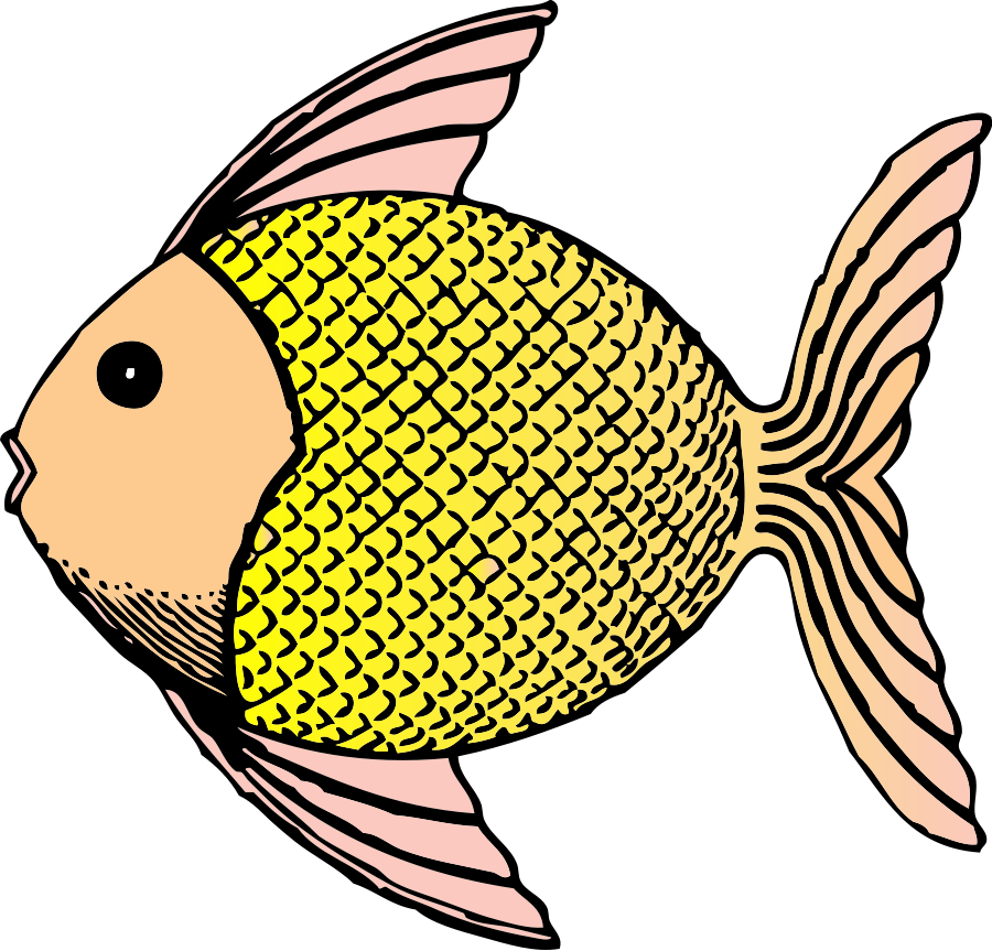 Scale clipart science. Fishing scales clipground vector