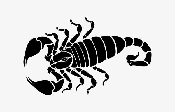 Scorpion clipart. Black tattoo png image