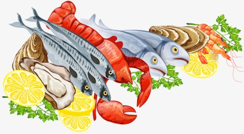 Seafood clipart. Risotto fish png image