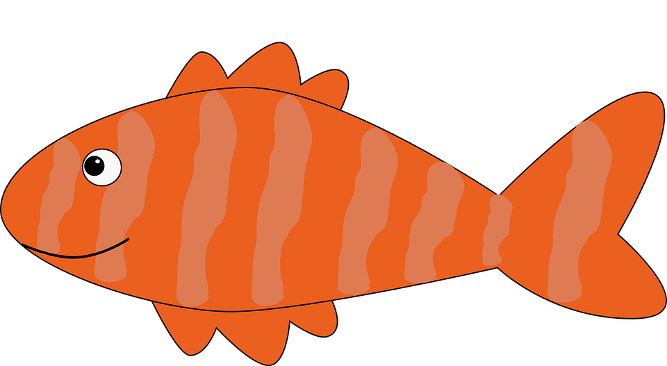 Seafood clipart animated. Collection of red fish
