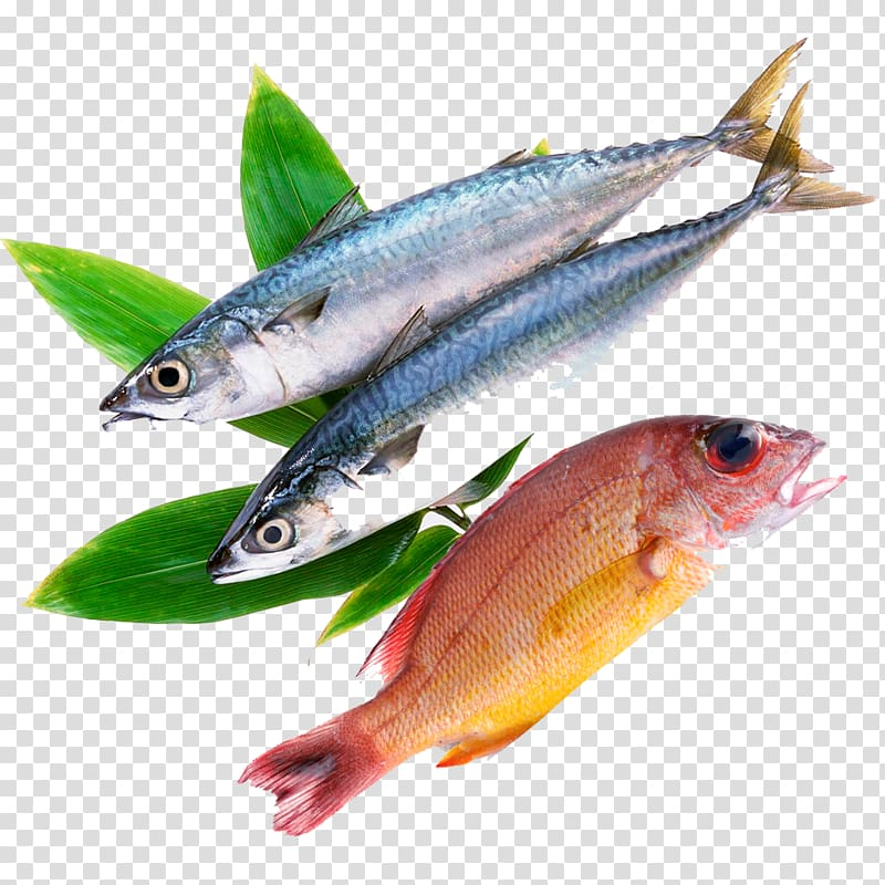 Frozen food meat milanesa. Seafood clipart raw fish