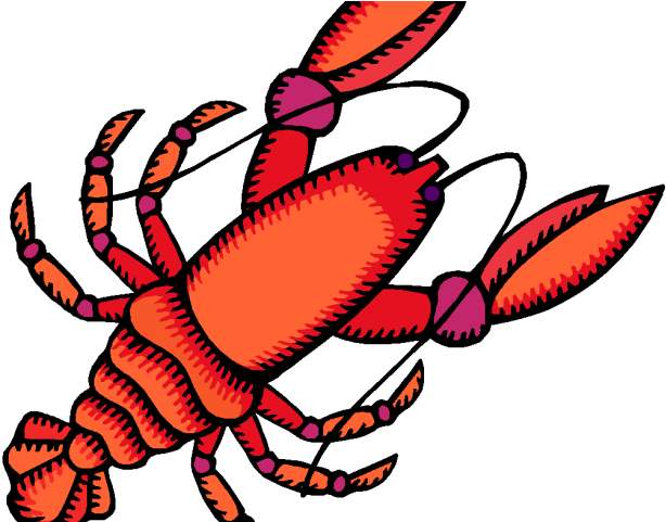 Crayfish acquired trait png. Seafood clipart yabbie