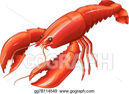 Vector illustration lobster eps. Seafood clipart yabbie