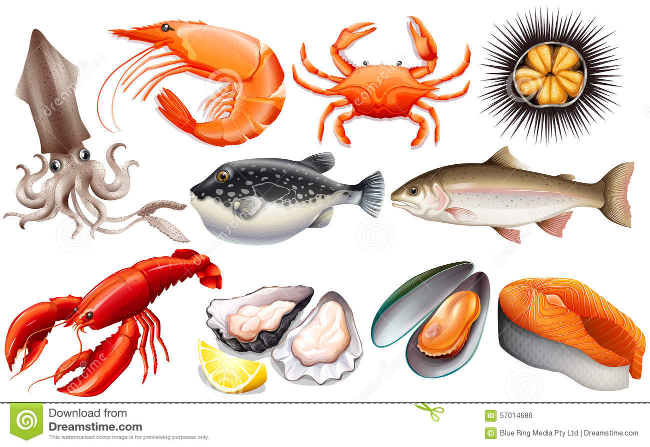 Free panda images seafoodclipart. Seafood clipart