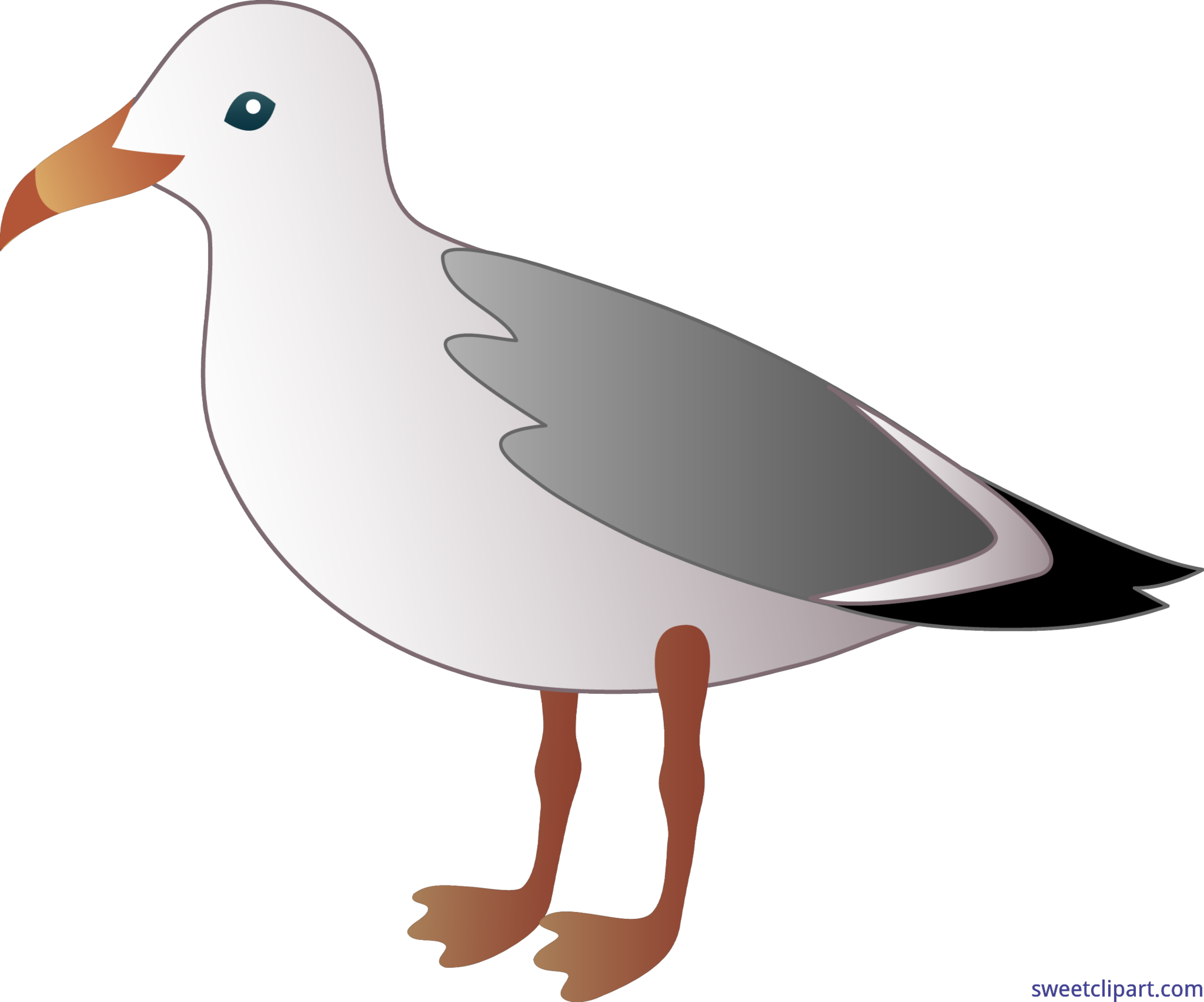 Clip art sweet. Seagull clipart