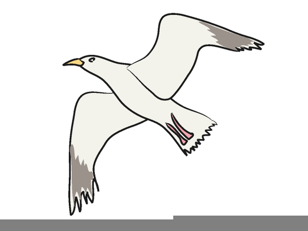 Flying free images at. Seagull clipart