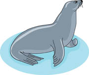 Seal clipart. Free clip art pictures