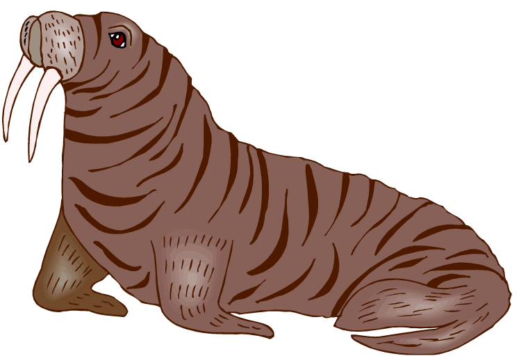 Seal Clipart Elephant Seal Seal Elephant Seal Transparent Free For Download On Webstockreview 2020 Download free elephant seal png images, privy seal, imperial seal of japan, imperial seal our database contains over 16 million of free png images. seal clipart elephant seal seal