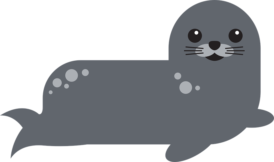 Seal clipart harbor seal. Png victor transparent image