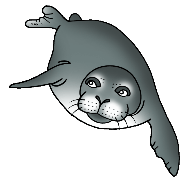 United states clip art. Seal clipart harbor seal