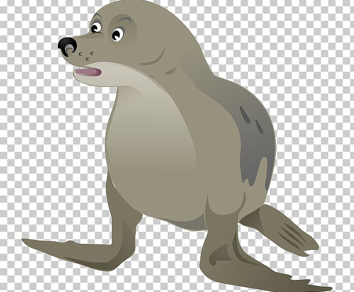 Png free download . Seal clipart harbor seal