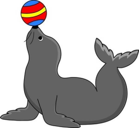 Free download on webstockreview. Seal clipart real animal