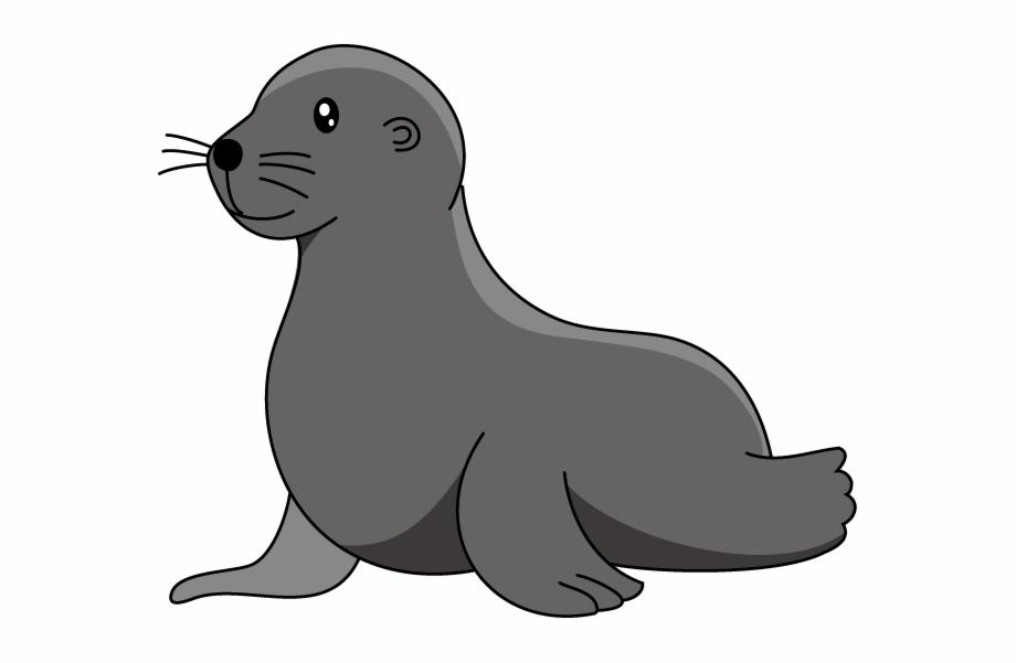 Baby clip . Seal clipart sea lion