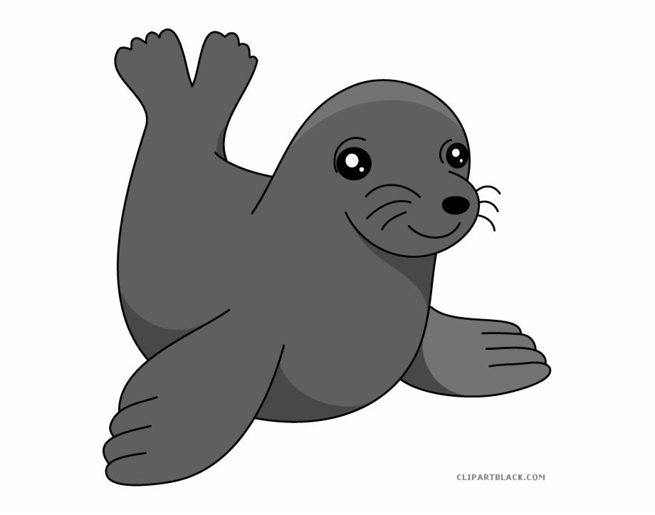 Seal clipart sea lion. Clip art lions png