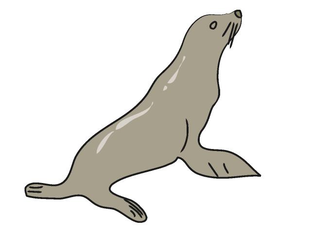 Free download clip art. Seal clipart sea lion