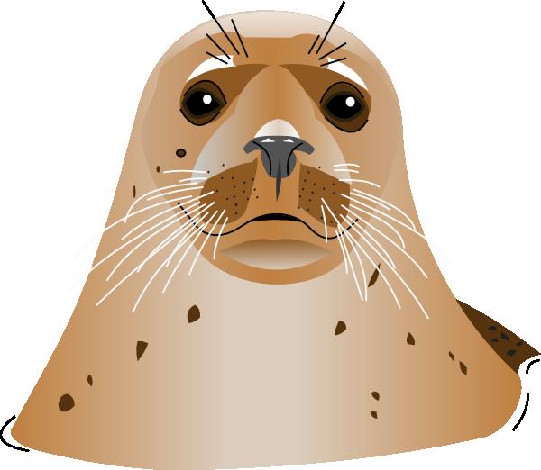 Brown clip art at. Seal clipart sea otter