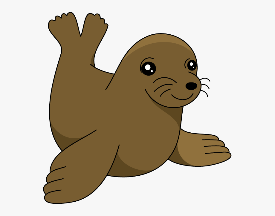 Seal clipart seal pup. Sea lion clip art