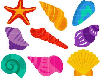 Seashell etsy bright clip. Seashells clipart
