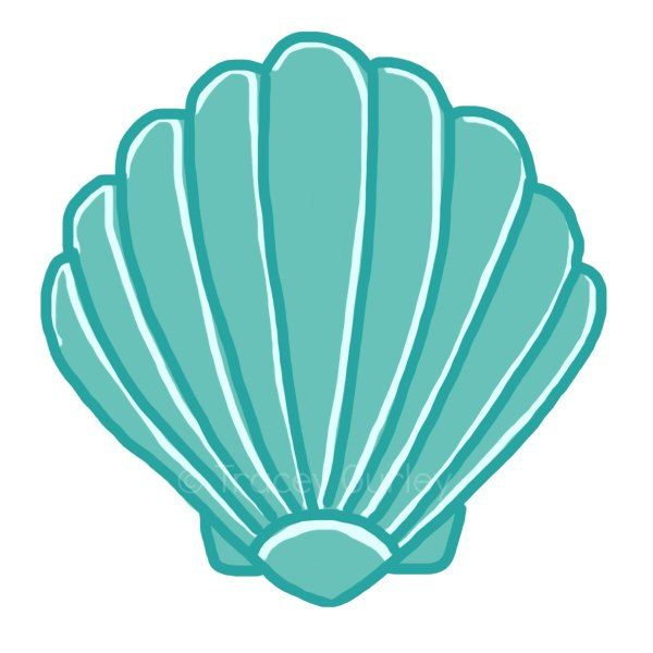 Sea shell clip art. Beach clipart seashell