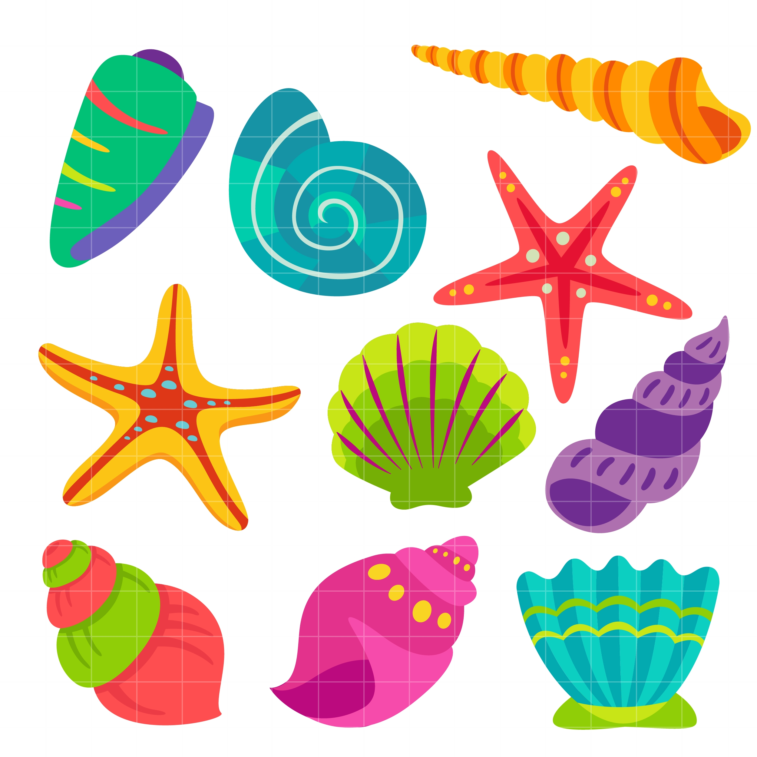Seashells clipart. Awesome collection digital coloring