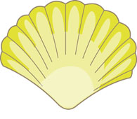Seashells clipart. Free clip art pictures