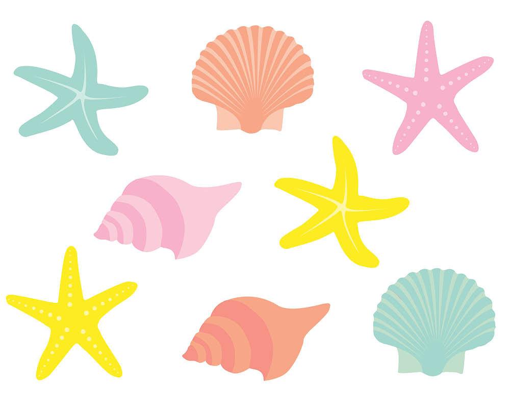 seashells clipartlook. Shell clipart under sea