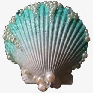 Shell clam blue ocean. Seashells clipart aqua