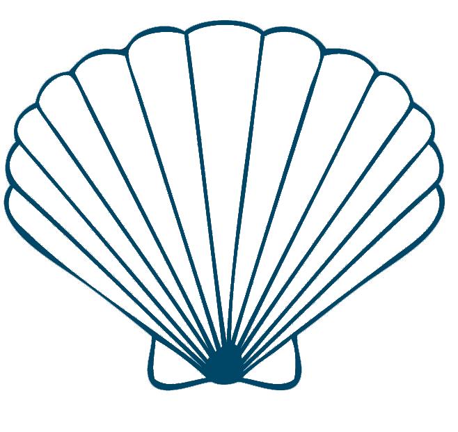 Concha png pesquisa google. Seashells clipart conchas