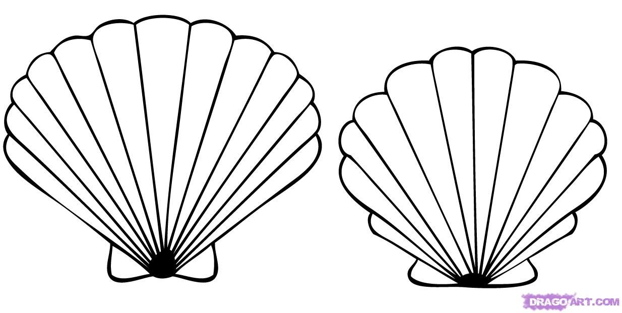 Shell clipart easy. Sea shells coloring pages