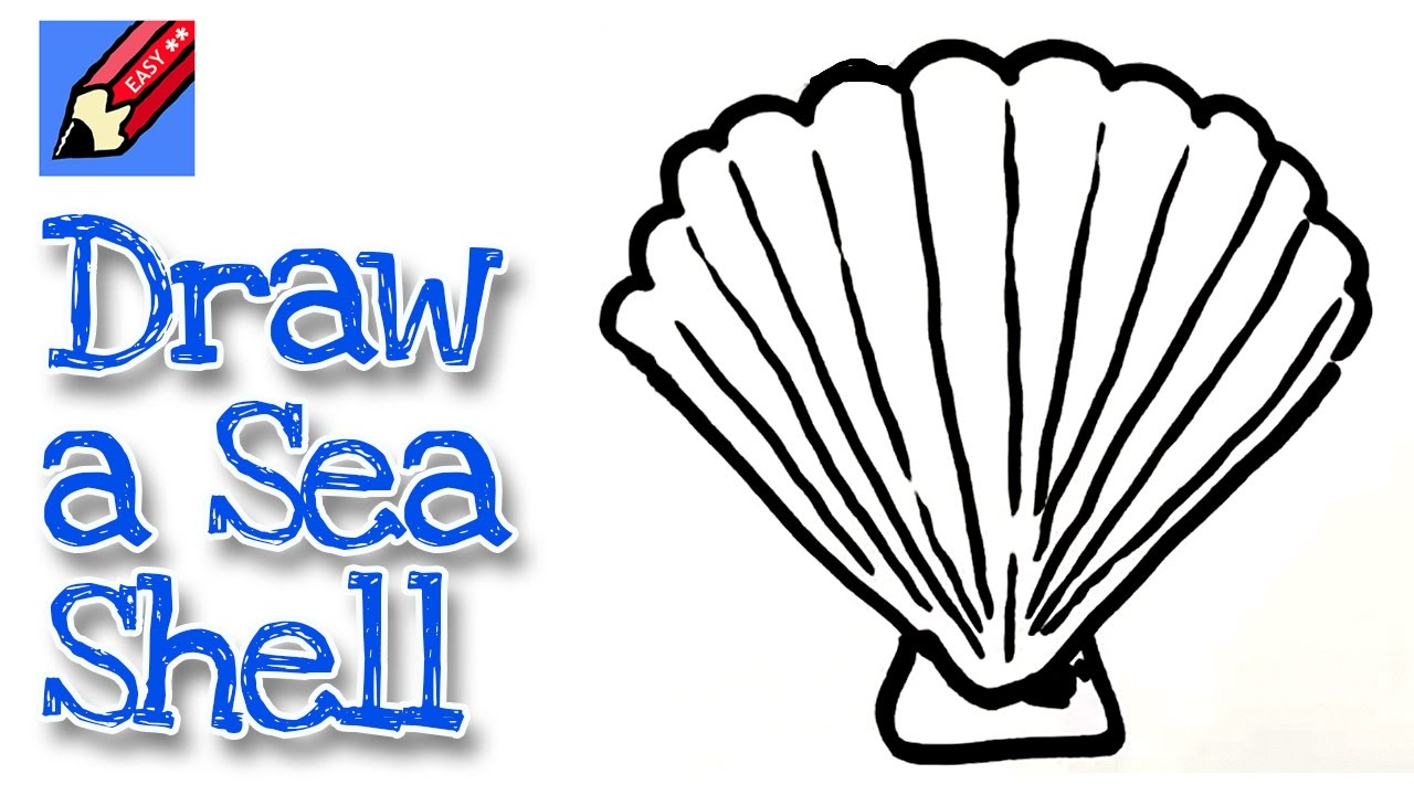 Shell clipart easy. How to draw a