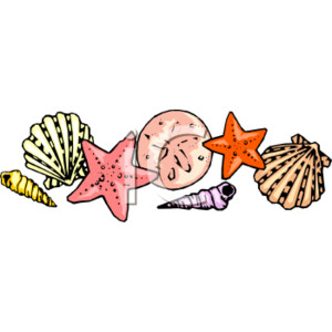 Shell clipart sea side. Image free download best