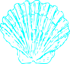 Free wedding shells cliparts. Shell clipart turquoise