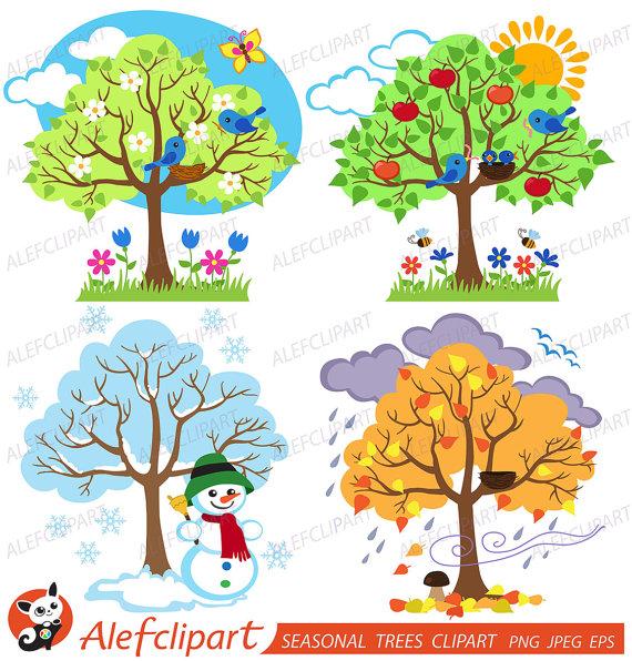 Four trees seasonal and. Seasons clipart