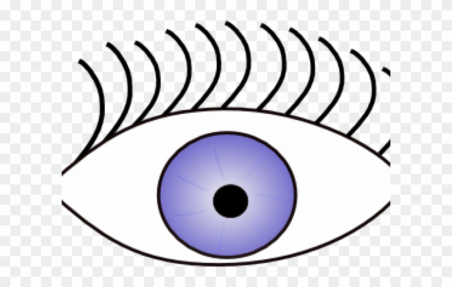 Eyeball see sense eye. Eyeballs clipart eyesclip