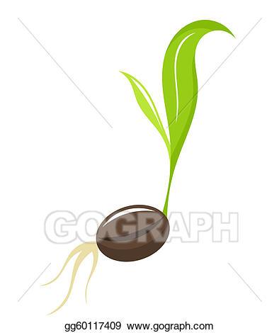 Seedling clipart. Vector newborn plant illustration