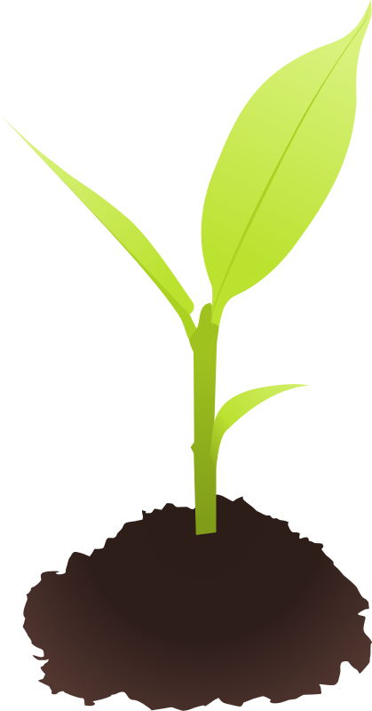 Seedling station. Worm clipart plant insect