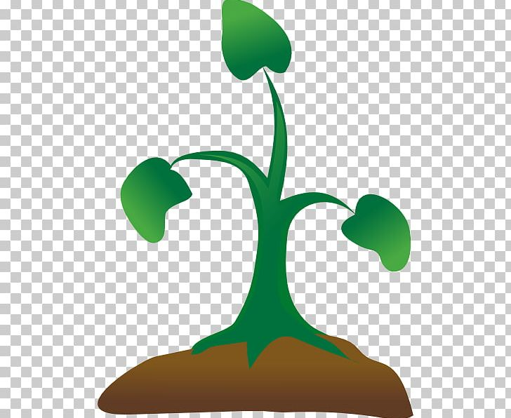 Seedling clipart clip art. Sprouting tree png flora