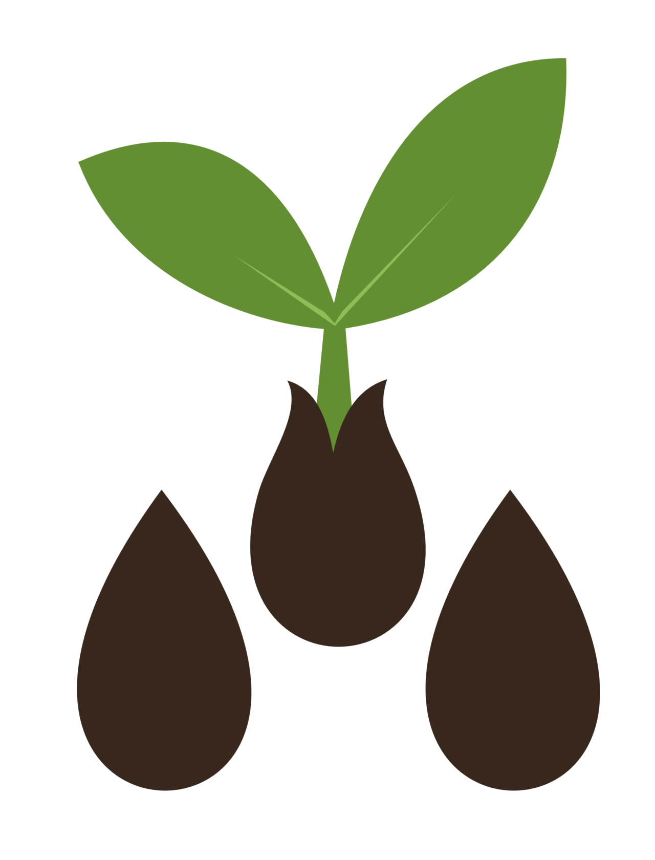 Seedling clipart coconut seed. Sprouting cutie mark crusaders