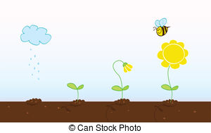Free growing cliparts download. Seedling clipart flower growth