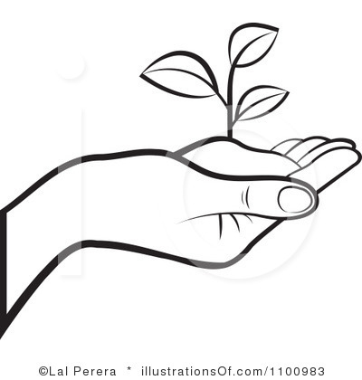 Free download best on. Seedling clipart garden soil