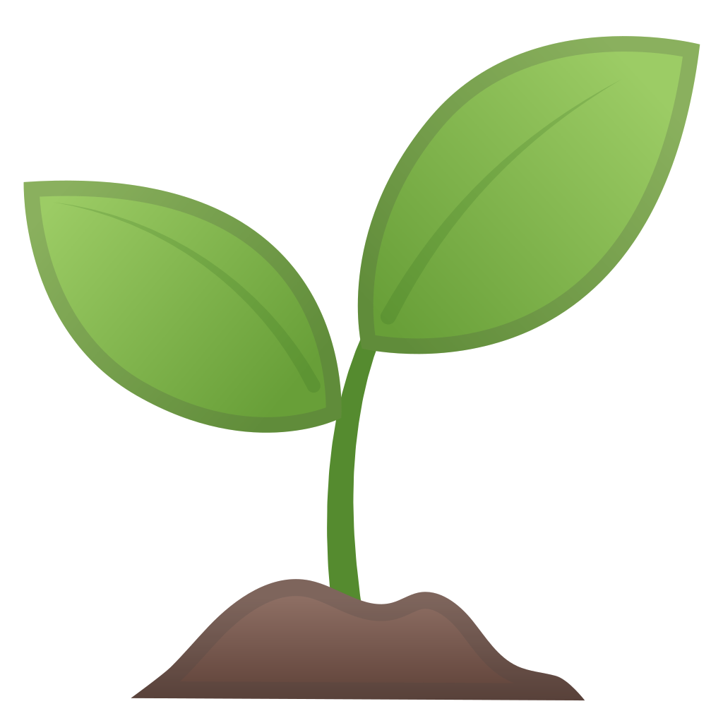Seedling green plant