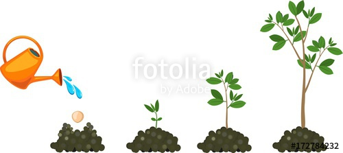 Plant growing from seed. Seedling clipart growth rate