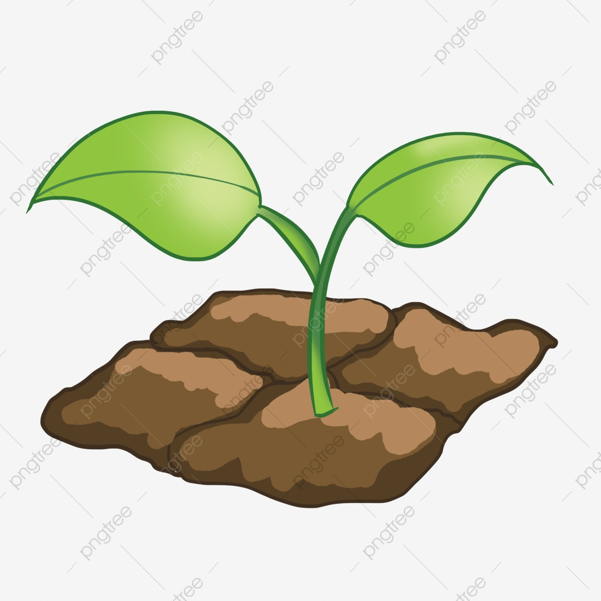 Hand painted seedlings germination. Seedling clipart land plant