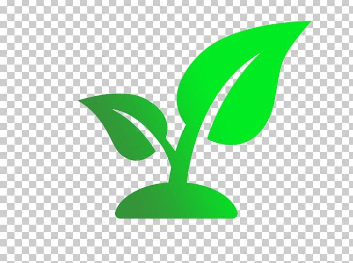 Champaign urbana community fab. Seedling clipart leaf stem