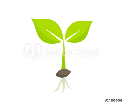 Germinating from seed icon. Seedling clipart little plant