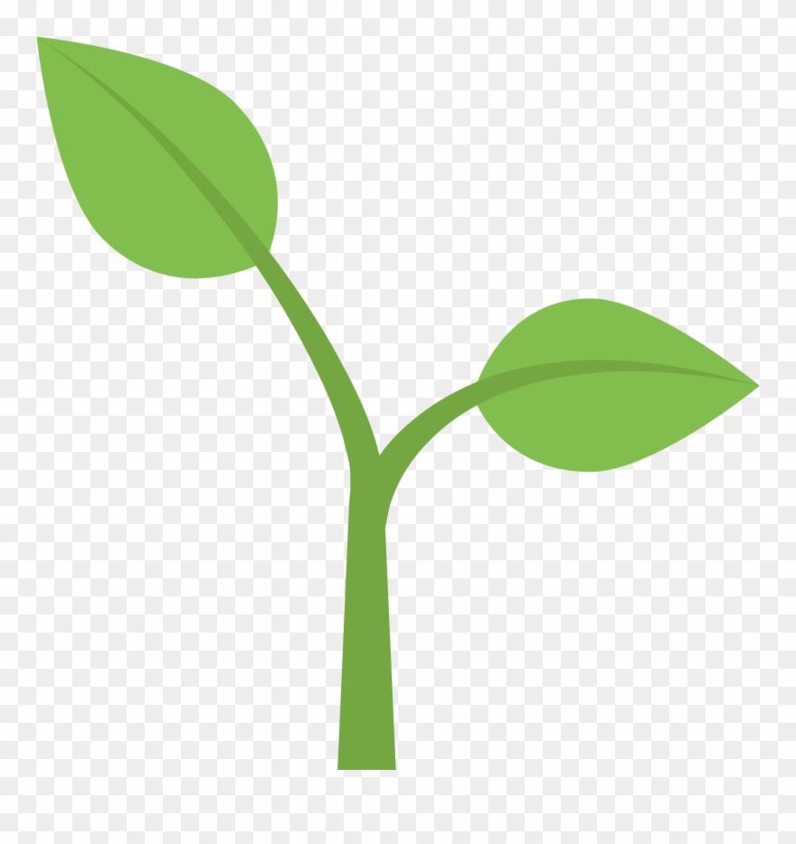 Flower stem template buy. Seedling clipart plant face
